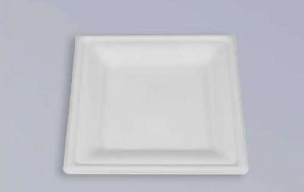 Using bagasse instead of raw materials to produce tableware
