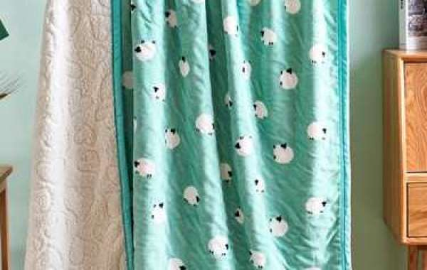 What are the characteristics of PV plush blankets?